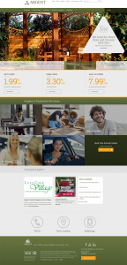 Argent Credit Union website design