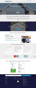 Steiner Business Solutions Website Design