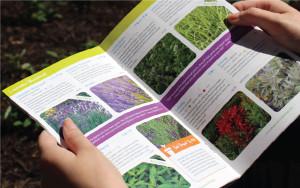 The Growers Exchange Catalog