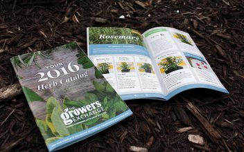 Catalog Design  for The Growers Exchange